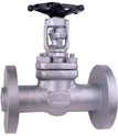 Forged Steel Gate Valve, Cl-300, Flanged