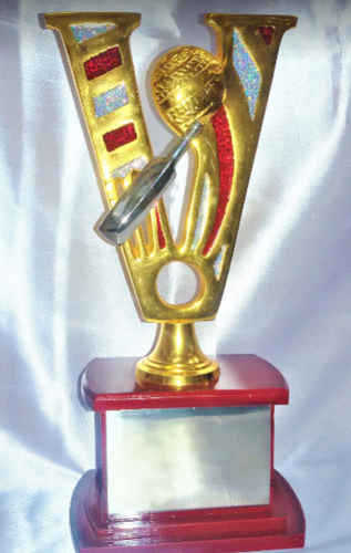 Award Design Trophy Cricket Champions Wholesaler From Guwahati