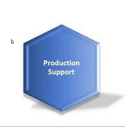Production Support  Service