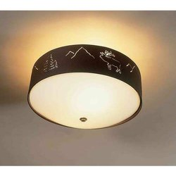Ceiling Light Fixture At Best Price In