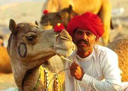 Rajasthan Tour Packages Services