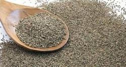 Ajwain Seed Extract - Trachyspermum Copticum, Pack Size: 10 To 25 Kg