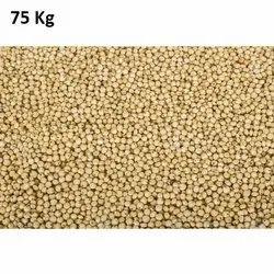 Jawar Seed, Packaging Type: PP Bag, Packaging Size: 75 Kg