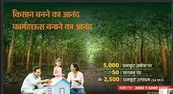 Agriculture Plots with Teak wood Plant  On Nagpur