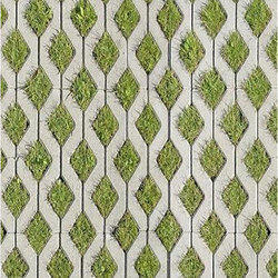 Grass Pavement Texture Images