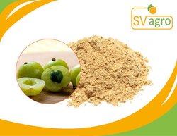 Fruit / Amla Extract/ Indian Goosebery Powder
