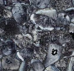 Black Crystal Agate Slab