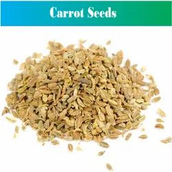 PJ Natural Carrot Seeds, Packaging Type: Pp Bag, Packaging Size: 25 Kg And 50 Kg