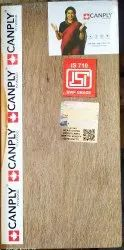 Wooden Canply Plywood Gold BWP 710 Grade, Grade: Platinum, Thickness: 19mm