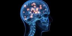 Neuro Science Treatment Service