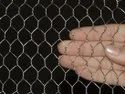 Ss304 Hexagonal Chicken Wire Mesh, For Industrial