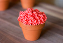 Clay Mini Cupcake Pot