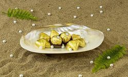 Sea Shell Platter & Bowl
