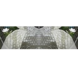 Designer Jamdani Silk