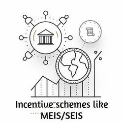 Incentive Schemes Like MEIS And SEIS Services