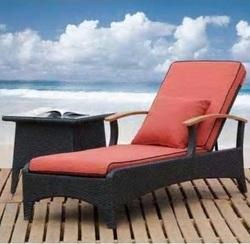 Swimming Poolside Bed and Lounger