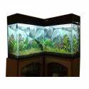 Corner Joint Aquarium tank