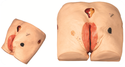 Decubitus Ulcer Care Simulator Models