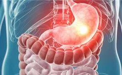 Gastro Enterology Services