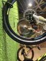 Viva Cycles