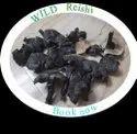 Organic Ganoderma Reishi Mushroom