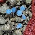 Organic Dry Black Turmeric, For Food
