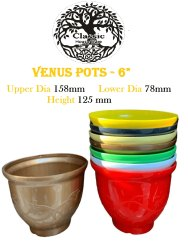 Venus Flower Pots