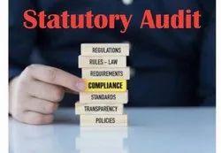 Statutory Audit Services, Pan India