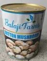 Pan India Canned Button Mushroom, Packaging Type: Box