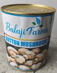 Canned Button Mushroom