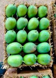 Alphonso Ratnagiri Mango For Export On Carton Box
