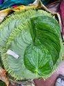 Sweet Betel Leaf . Khar Metha.