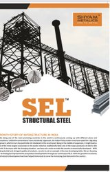 MS Angle SEL Structure