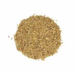 Cumin Seeds, 20 kg