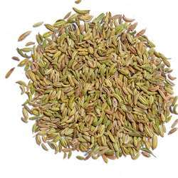 Fennel Seeds, Pack Size: 200g
