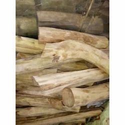 Big Sandalwood Logs