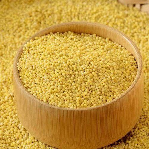 Little Millet ( Sama Rice)