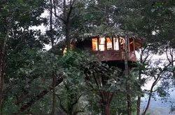 Tree House Cost Nainital