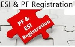 EPF Registration Services, in Pan India, Needed Scheme Type: Statutory Support