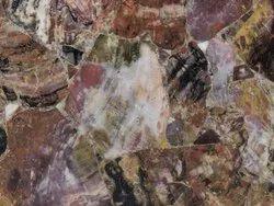 Precious Red Petrified Wood Stone Slabs