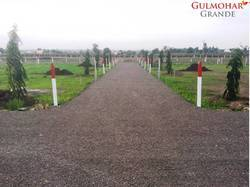 Gulmohar Grand Phase 1 Residential Plots