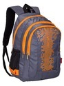 Grey Light Weight Big Size School Bag