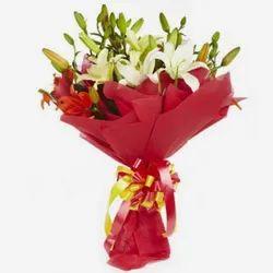 Magic Lilies Flower