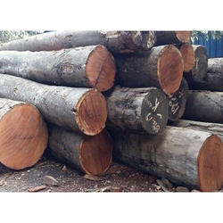 Kwila Wood Logs