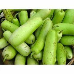 Fresh Organic Bottle Gourd, Packaging: 25-50 kg