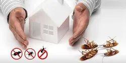 Home Pest Control Services, Madhya pradesh