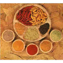 Mejwani 200 g Spice Powder, Packaging: Packet