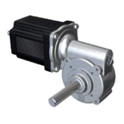 Brushless DC Electric Worm Gear Motor