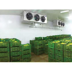 Banana Ripening Cold Storage Room