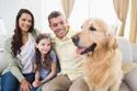 Pet Health Check-up And Treatment Service At Home